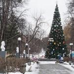 В Якутске поставят новогоднюю елку дороже, чем на Манхеттене