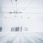 В Москве выпало рекордное количество осадков за всю историю метеонаблюдений