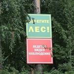 Госдума приняла в первом чтении закон о бесплатном сборе валежника