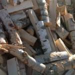 В Забайкалье недоступные для населения дрова заменят сбором валежника
