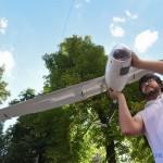 В Украине начали использовать дроны на солнечных батареях (фото)