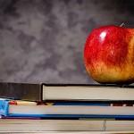 В России могут отказаться от 5-балльной системы школьных оценок