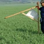 Украина первой в мире законодательно закрепила мониторинг земельных отношений