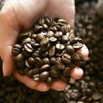 5 болезней, от которых защищает кофе