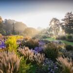 Закончился всемирный конкурс садово-парковой фотографии