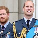 Почему принц Гарри носит обручальное кольцо, а принц Уильям нет