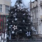 Россия убивает все живое: сеть ужаснуло, как облысела новогодняя елка на оккупированном Крыме (фото)