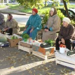 Россиян заставят платить налог за продажу излишков с личных подсобных хозяйств