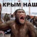 На оккупированном Крыме волк напал и погрыз людей, чего не случалось при Украине